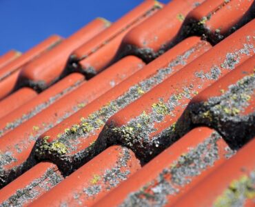 Featured image - The Most Common Roof Problems Plaguing Homeowners
