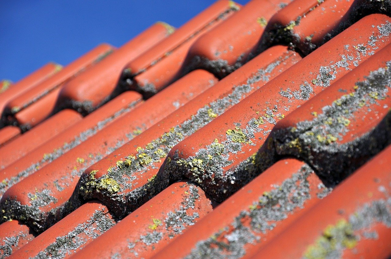 image - The Most Common Roof Problems Plaguing Homeowners