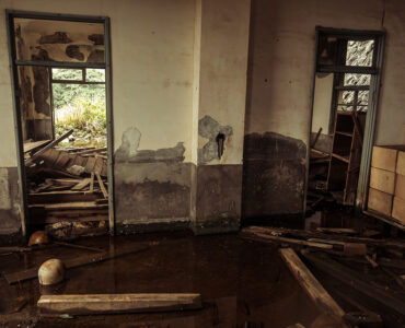 featured image - What to Do When Water Damage Is Ruining Your Home