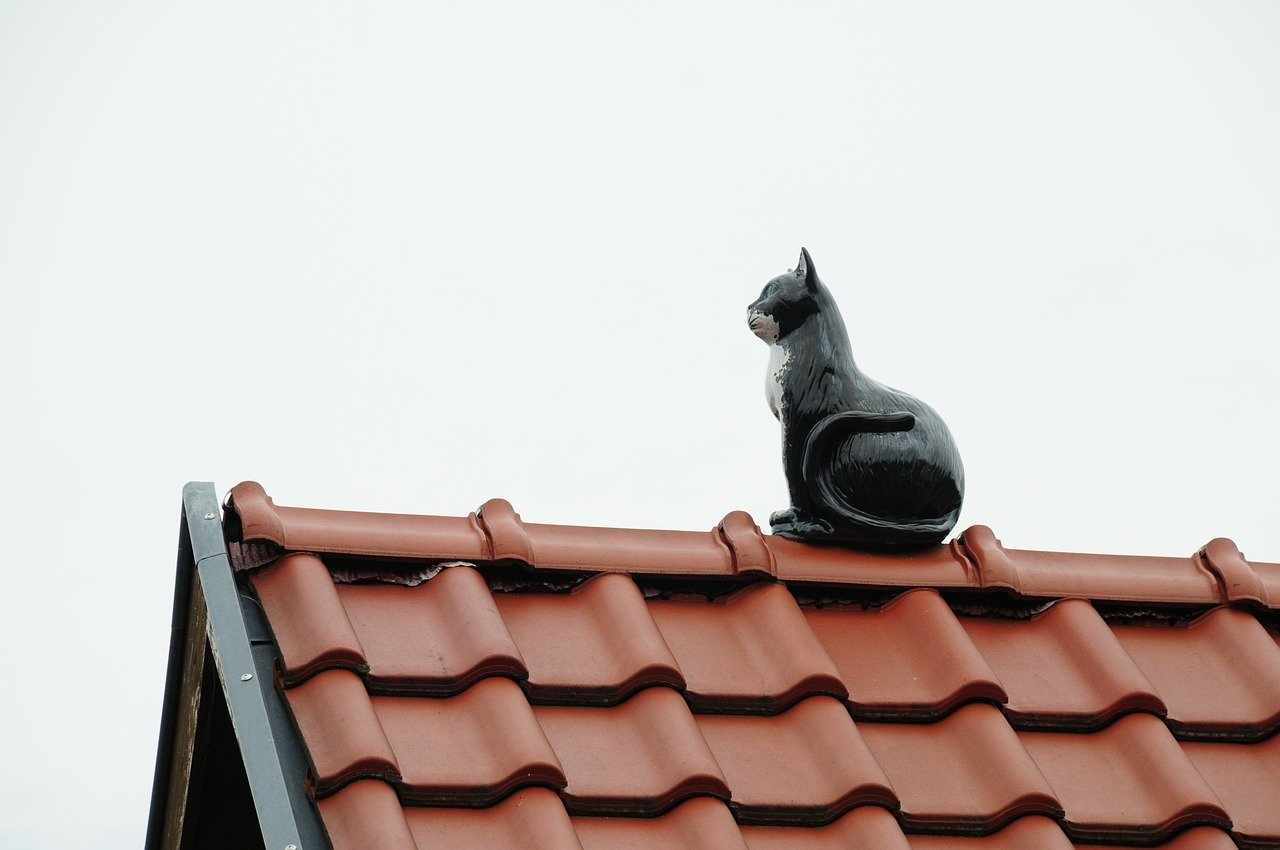 image - What Are the Things to Consider While Choosing a Roofing Company
