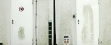 featured image - 7 Types of Security Doors for Your Office.