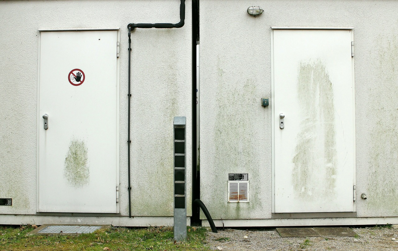 image - 7 Types of Security Doors for Your Office.