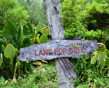 featured image - Effective Tips to Sell your Land