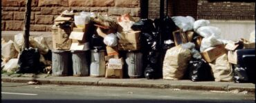 Featured image - Expert Ways to Handle Your Household Trash