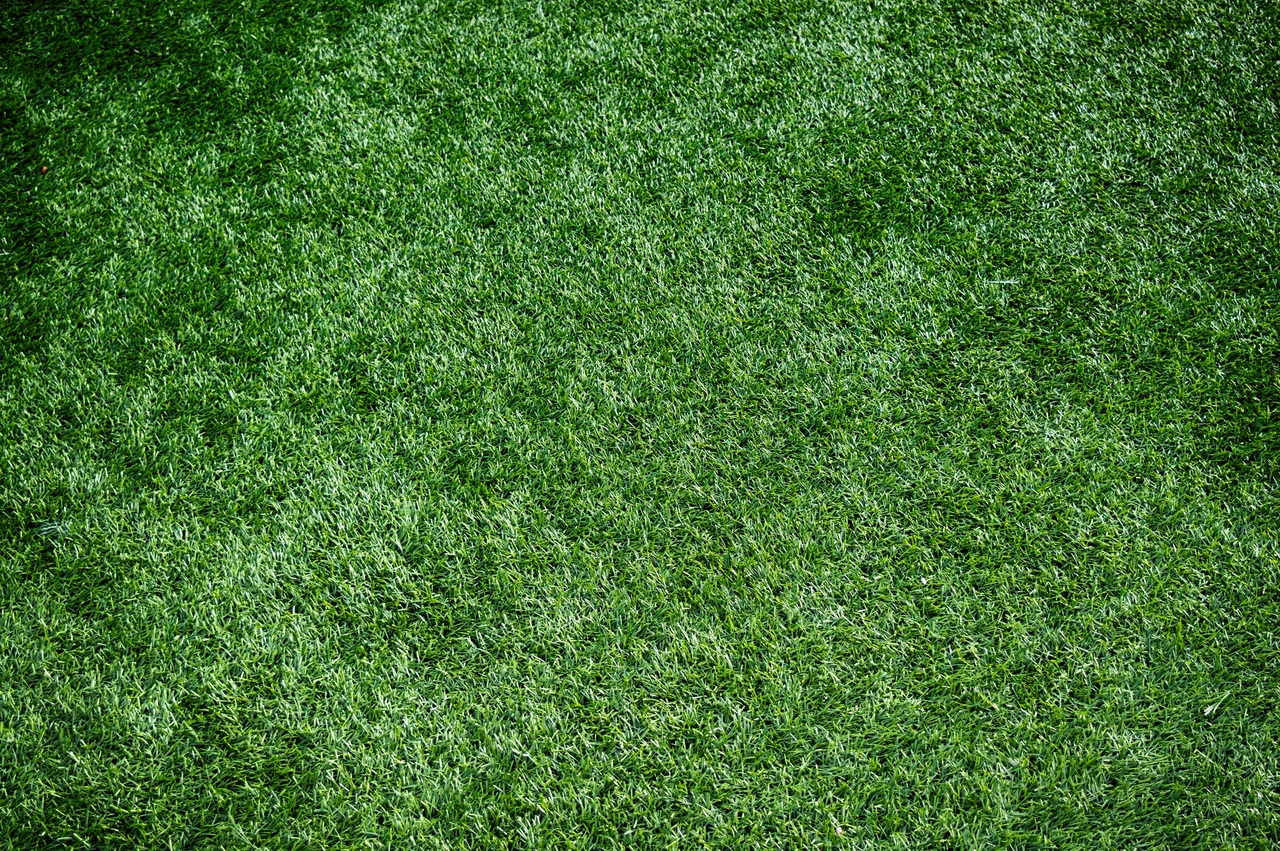 image - How Efficient and Beneficial to Install Artificial Grass