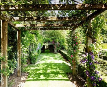 featured image - How to Design the Perfect Garden