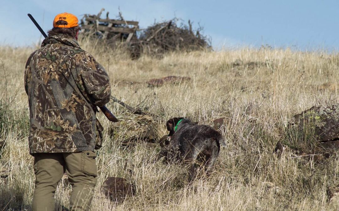 How to Find Your Dream Hunt