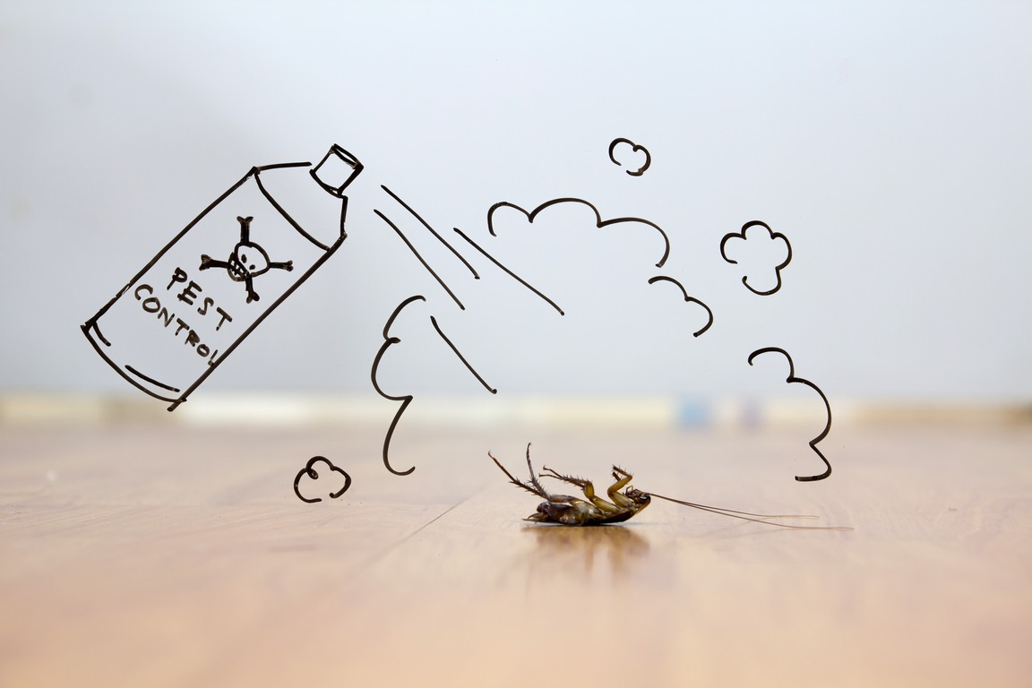 image - What are the 3 Methods of Pest Control