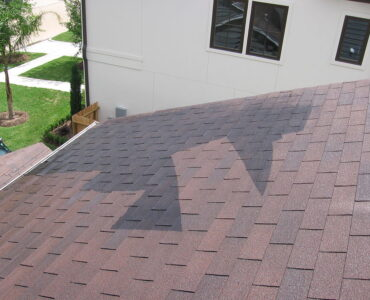 featured image - Why Hire a Professional to Clean your Roof