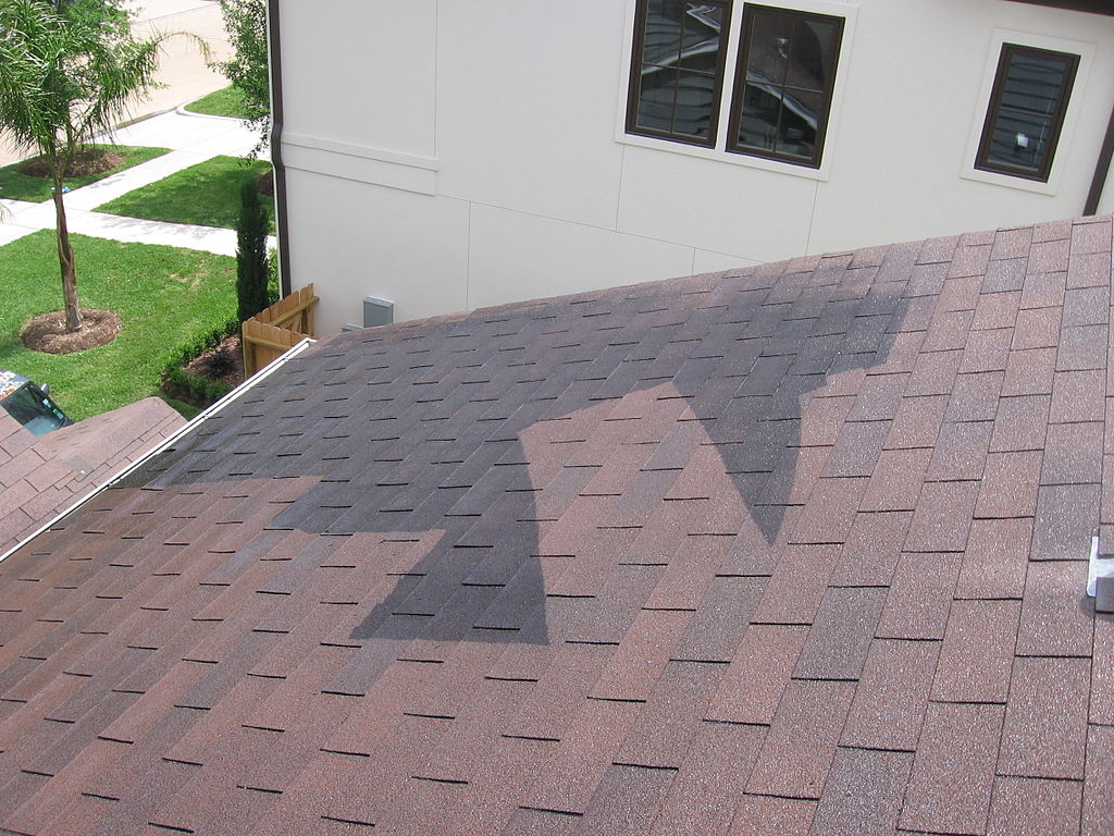 image - Why Hire a Professional to Clean your Roof