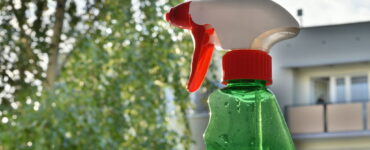 featured image - Why Is Green Cleaning Becoming More Popular