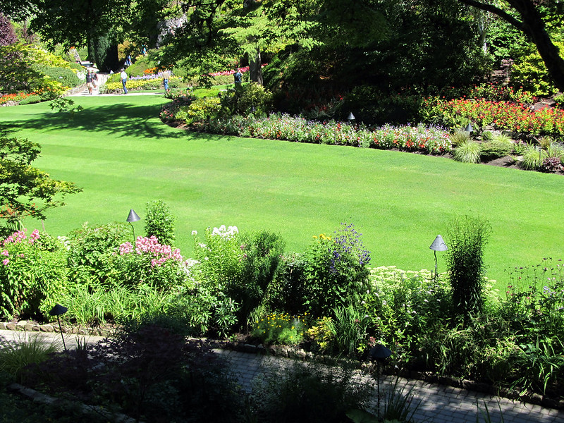 image - 5 Tips to Maintain Your Lawn