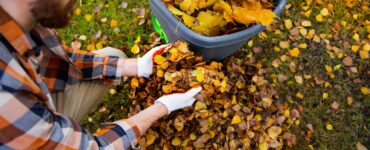 featured image - 9 Recommended Garden Waste Removal Ideas