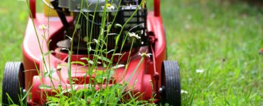 featured image - Electric Lawn Mower: How to Choose One