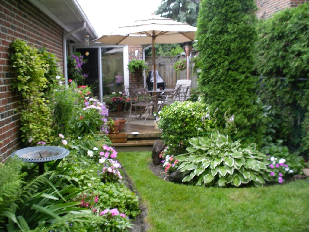 image - 7 Amazing Tips to Enhance Your Garden and Backyard