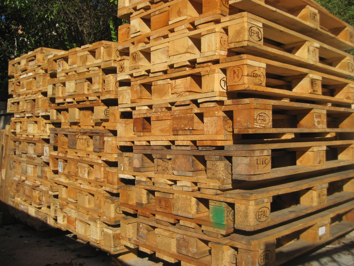 image - The Major Forest Products and Their Benefit