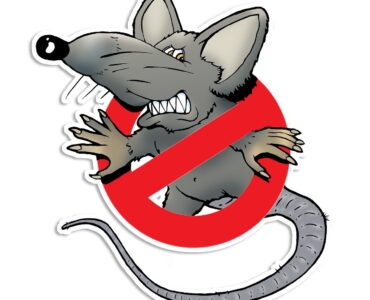 featured image - Top 5 Pest Control Tips for Homeowners