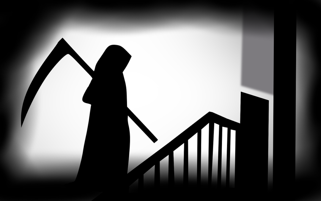 Top Movies on the Internet for a Horror Movie Marathon
