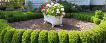 featured image - 3 Curb Appeal Front Yard Landscaping Ideas on a Budget to Consider
