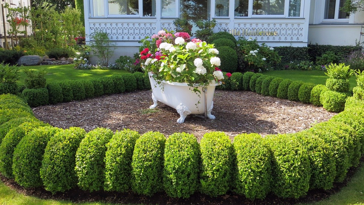 image - 3 Curb Appeal Front Yard Landscaping Ideas on a Budget to Consider