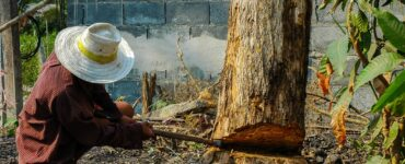 featured image - How to Cut Wood Without A Saw