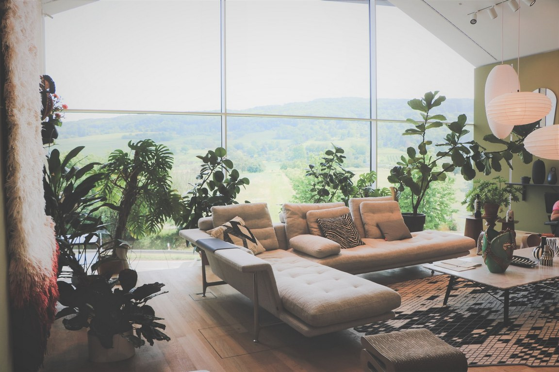 image - Make Your Living Room Timeless with Mid-Century Modern Style