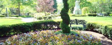 featured image - The Best Landscaping Careers to Check Out in 2021