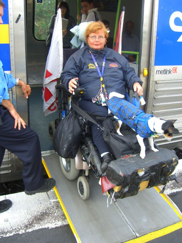 image - The Quick Wheelchair Ramp Buying Guide