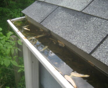 featured image - How Often Should the Gutters Be Cleaned