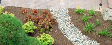 featured image - How to Use Hardscaping for Your Backyard?