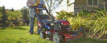 featured image - Is it Worth Paying for Lawn Care?
