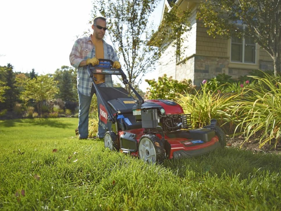 image - Is it Worth Paying for Lawn Care?