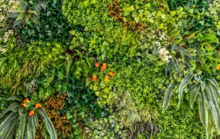 image - Reasons to Use Artificial Plants in Sydney Homes