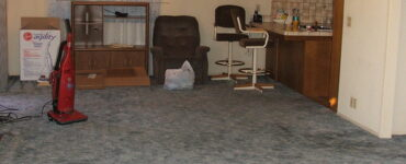 featured image - What Lives in Your Dirty Carpets