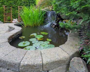 featured image - 5 Garden Structures to Elevate your Outdoor Areas