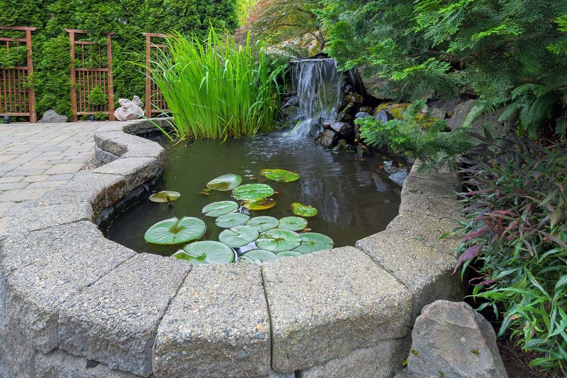 image - 5 Garden Structures to Elevate your Outdoor Areas