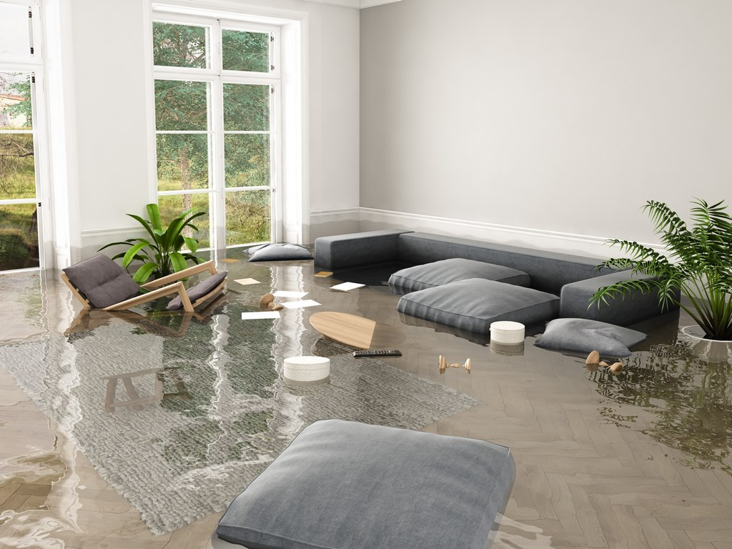 image - 8-Step Checklist for Dealing with Flood and Water Damage