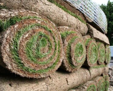 featured image - How To Find Turf Suppliers Near Me
