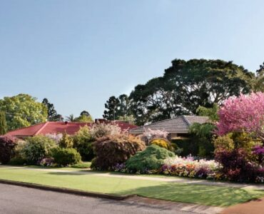 featured image - Landscaping Tips to Boost Rental Value