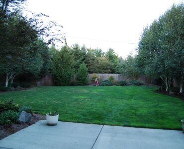 featured image - 5 Huge Benefits of Buying a Home with a Big Backyard