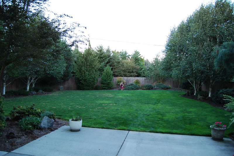 image - 5 Huge Benefits of Buying a Home with a Big Backyard