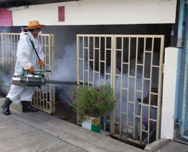 featured image - Can Spraying Help Control Mosquitoes?