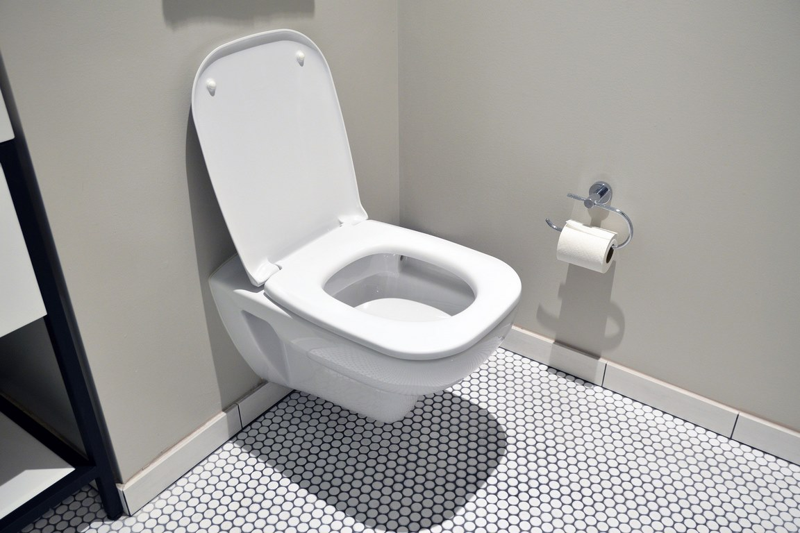 image - How to Find Perfect Toilet for Your Needs