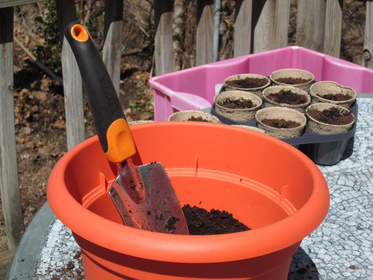 image - What Can I Use for Container Gardening