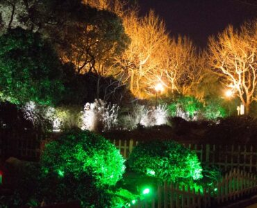 featured image - What is the Best LED Landscape Lighting?
