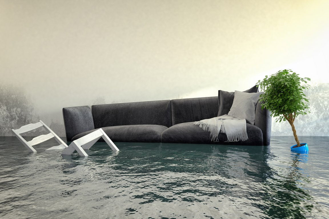 image - First Steps to Recovery After a Water Backup Occurs in Your Home