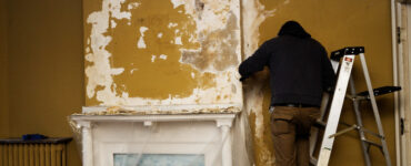 featured image - 7 Reasons to Opt For Professional Mold Removal