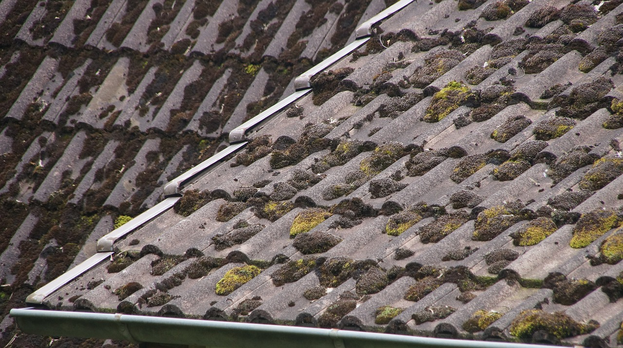 Is Your Roof Leaking? 7 Signs You Need to Repair Your Roof
