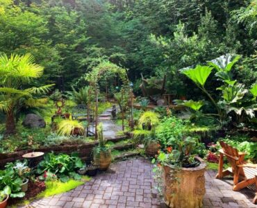 featured image - Tips to Consider When Designing your Dream Backyard