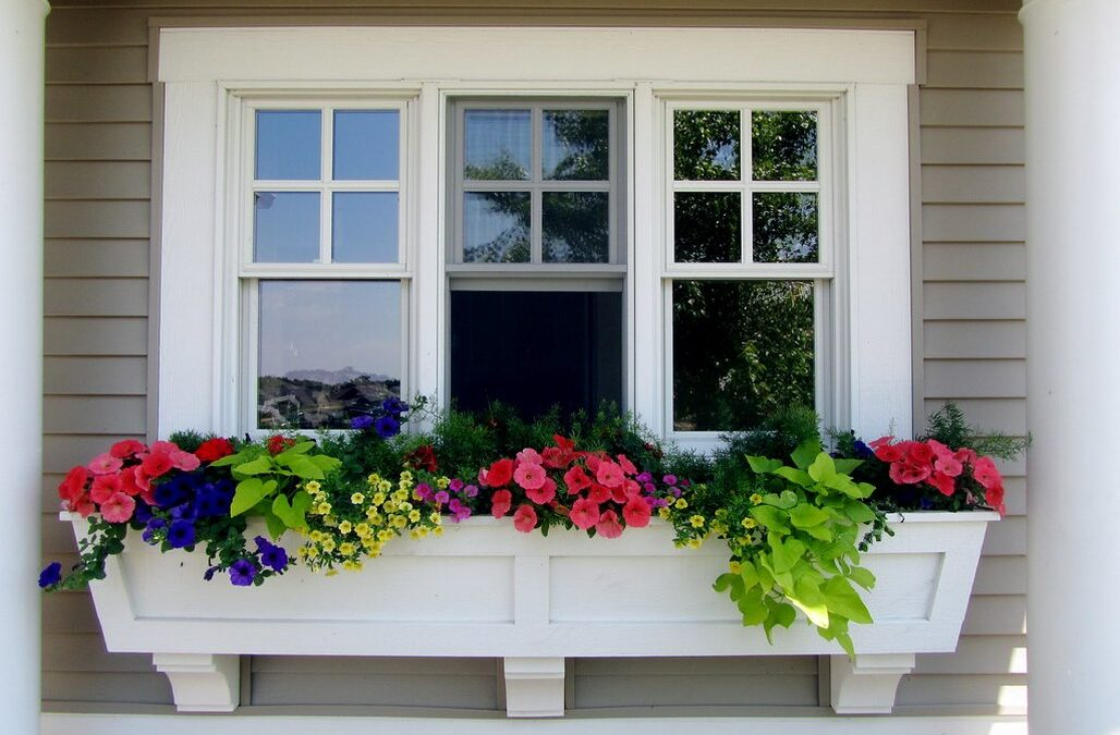 Windows for your Wonderful Home: What are your Top Preferences?